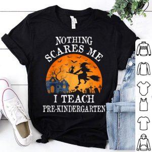 Funny Nothing Scares Me I Teach Pre-kindergarten Teacher Halloween shirt