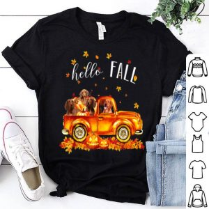 Awesome Halloween Hello Fall Dachshund Funny Dachshund Gift shirt