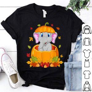 Official Thanksgiving Cute Elephant Pumpkin shirt
