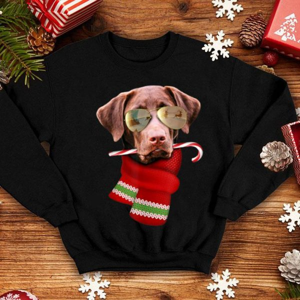 Official Chocolate Labrador Christmas Gift for Dog Lovers Sunglasses sweater