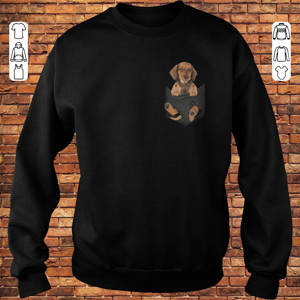 https://premiumleggings.net/images/2018/11/Dachshund-in-Tiny-Pocket-shirt-Sweatshirt-Unisex-1.jpg
