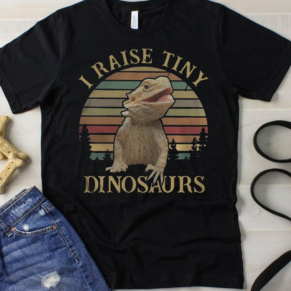Sunset I raise tiny dinosaurs shirt