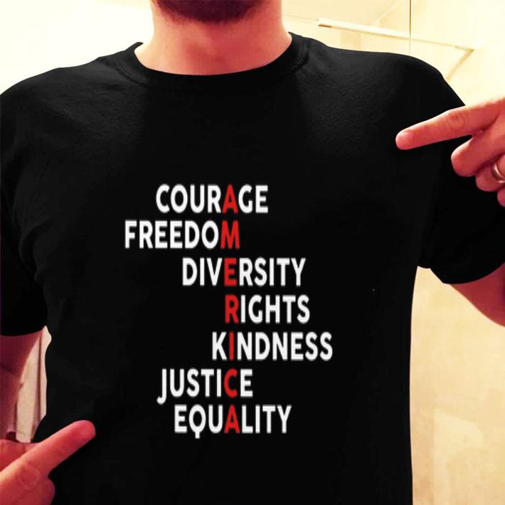 America Courage Freedom Diversity Rights Kindness Justice Equality shirt