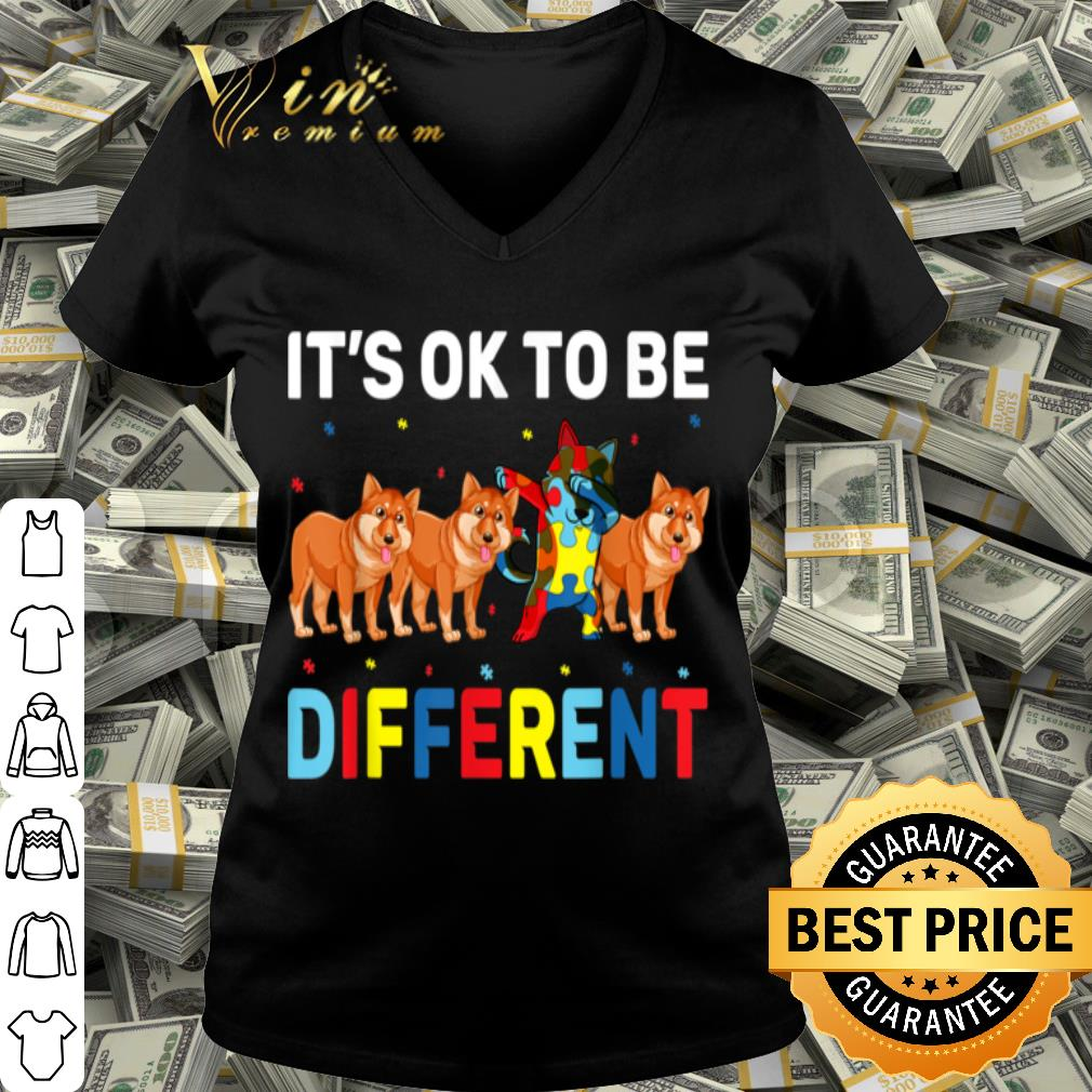 Autism Awareness Day Gift Funny Dabbing Shiba Inu shirt