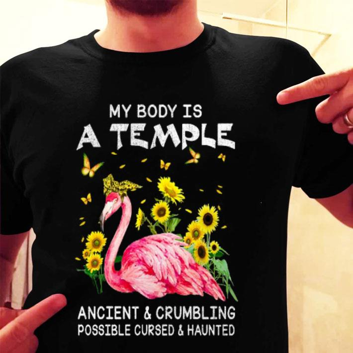 Flamingo my body is a temple ancient & crumbling possible cursed shirt