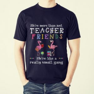 Awesome We're More Than Just Teacher Driends We're Like A Really Small Gang Flamingo shirt