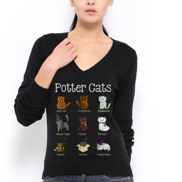 Harry Potter Kind Of Cats hoodie