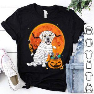 Original Labrador Retriever Dog Candy Pumpkin Halloween Gifts shirt