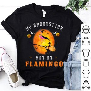 Nice Flamingo Witch Halloween Costume shirt