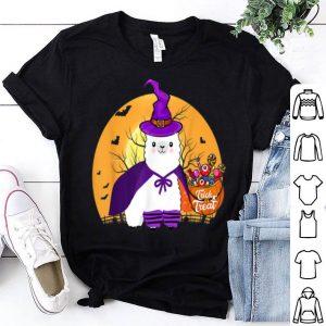 Hot Llama Witch Cute Funny Llama Halloween Costume shirt