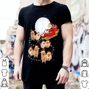 Nice Funny Pomeranian Christmas Reindeer Christmas Lights Pajama shirt