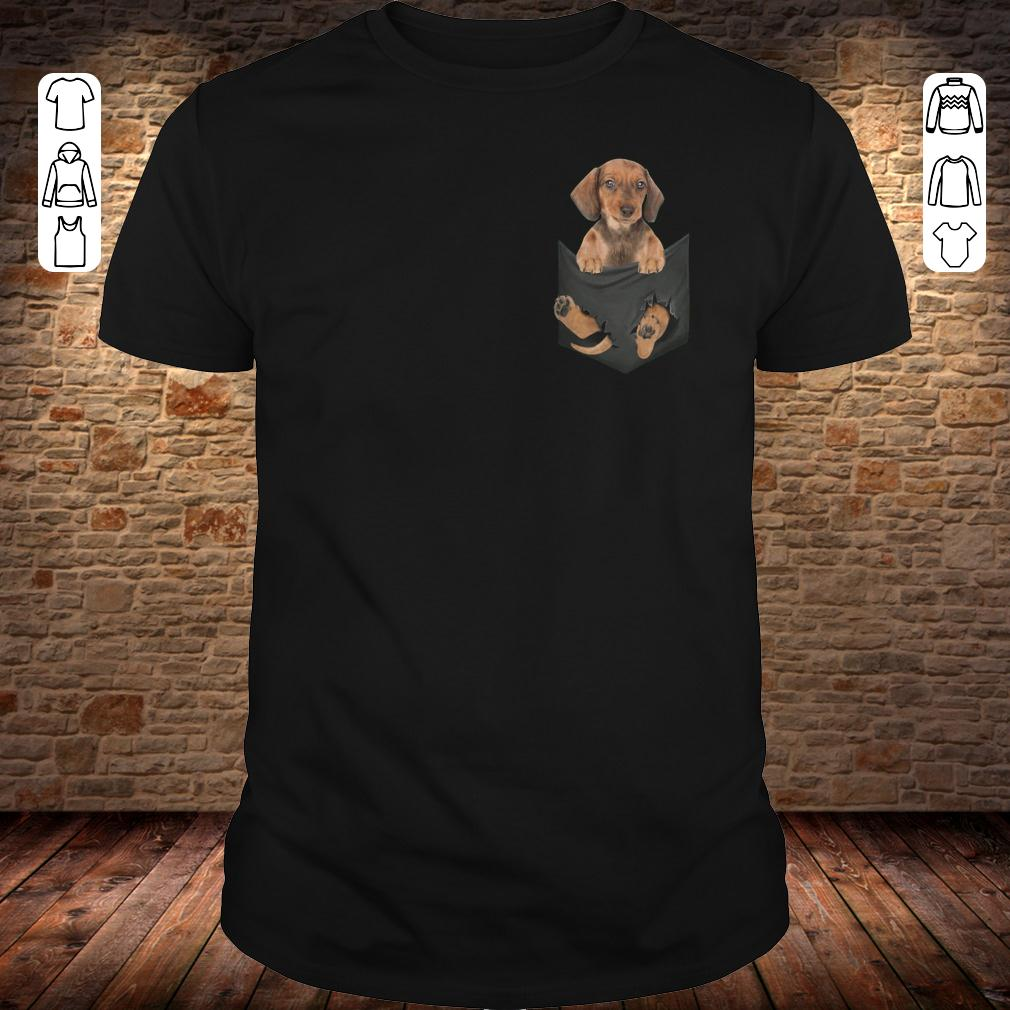 Dachshund in Tiny Pocket shirt