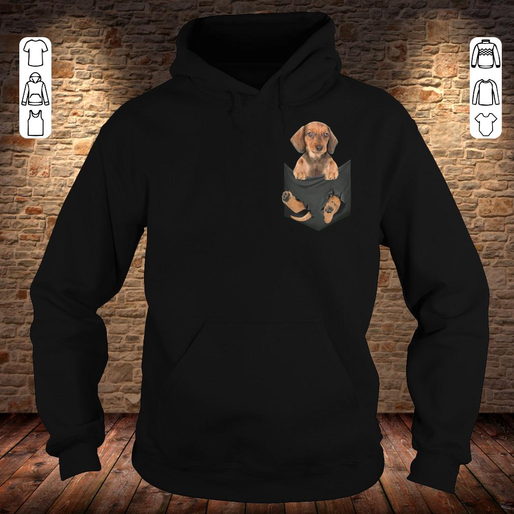 Dachshund in Tiny Pocket shirt Hoodie