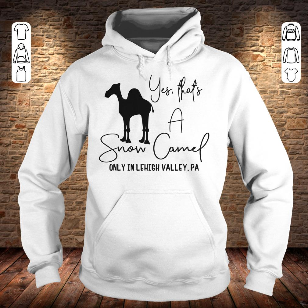 Snow Camel only in lehigh valley shirt Hoodie