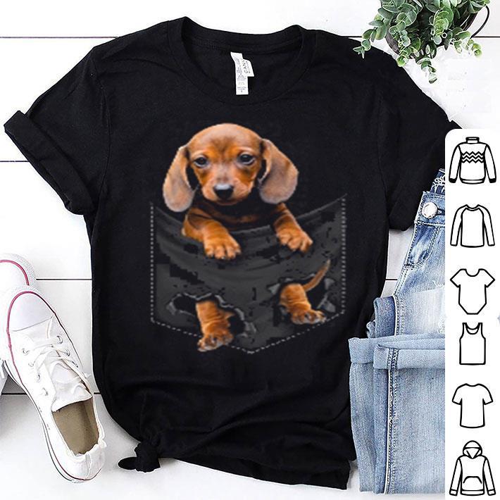 Dachshund in pocket shirt