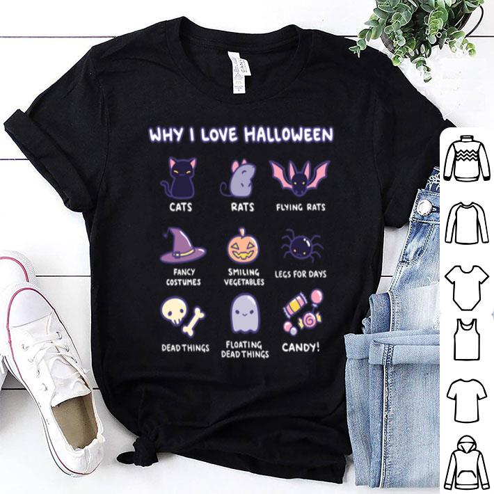 Why i love halloween cats rats flying rats fancy costumes shirt