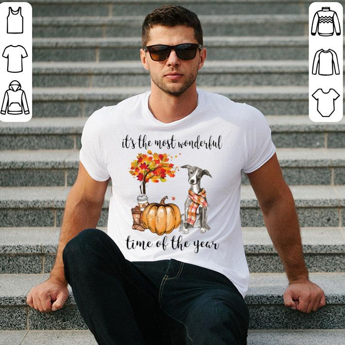 Greyhound pumpkin it's the most wonderful time of the year shirt