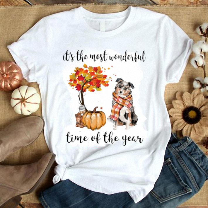 Pumpkin & Aussie dog it's the most wonderful time of the year shirt