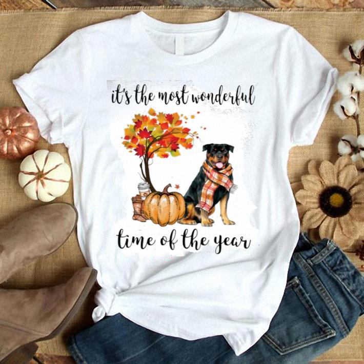 Rottweiler & Pumpkin it's the most wonderful time of the year shirt