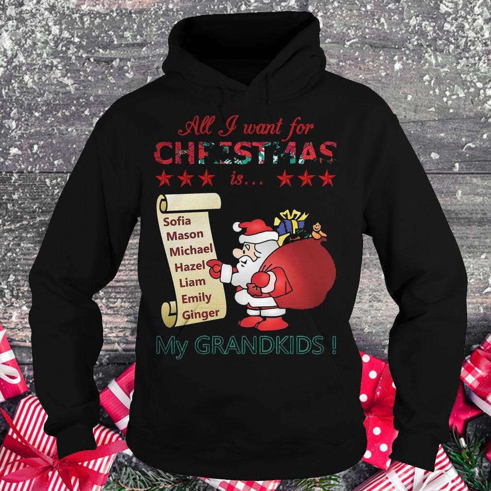 All i want for Christmas is Sofia Mason Michael Hazel Liam Emily Ginger my grandkids shirt Hoodie