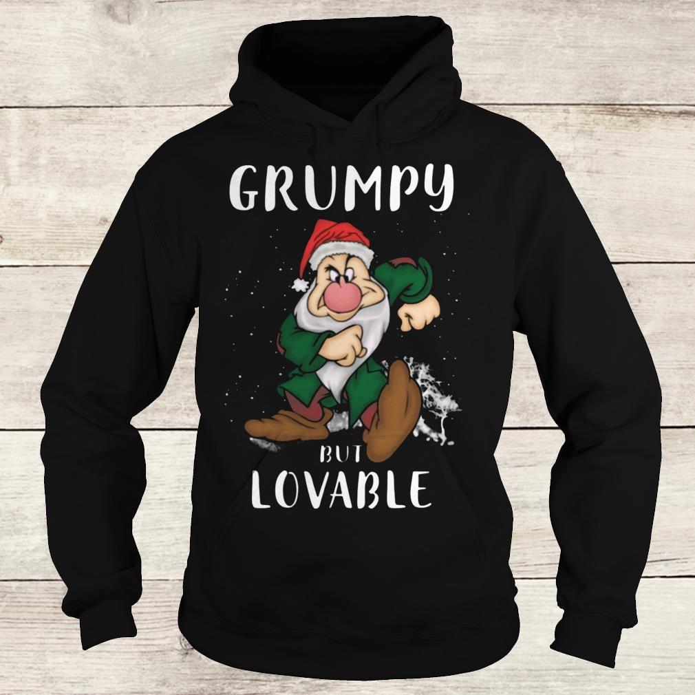 Premium Grumpy but lovable Shirt Hoodie