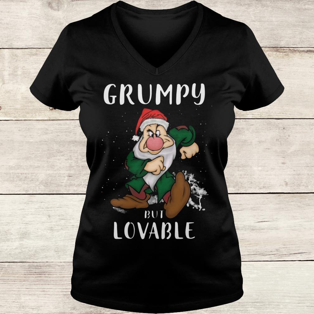 Premium Grumpy but lovable Shirt Ladies V-Neck