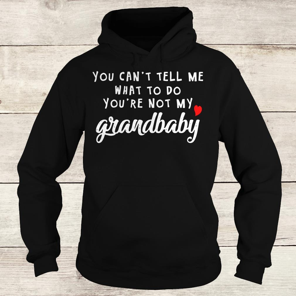 Premium You can't tell me what to do you're not my grandbaby shirt Hoodie