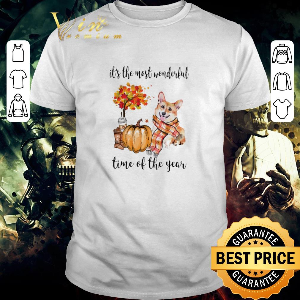 Awesome Pumpkin & Corgi it's the most wonderful time of the year shirt