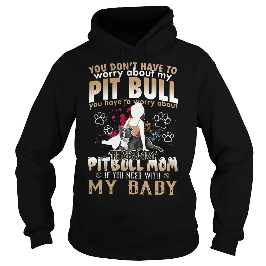 You Don't Have To Worry About My Pit Bull You Have To Worry About My Baby Hoodie