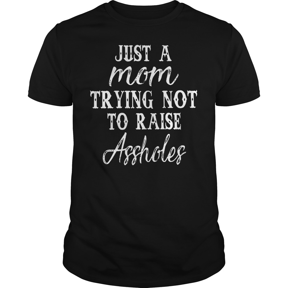 Just A Mom Trying Not To Raise Assholes T Shirt Guys Tee 2.jpg