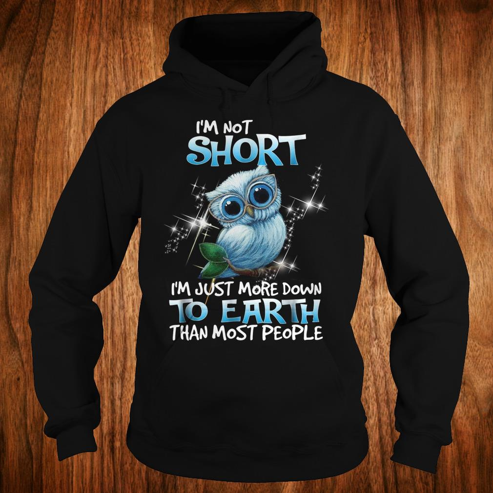 Own I'm not short I'm just more down to earth than most people shirt Hoodie