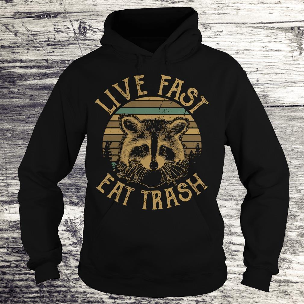 Original Raccoon Sunset Camping Live fast eat trash shirt Hoodie