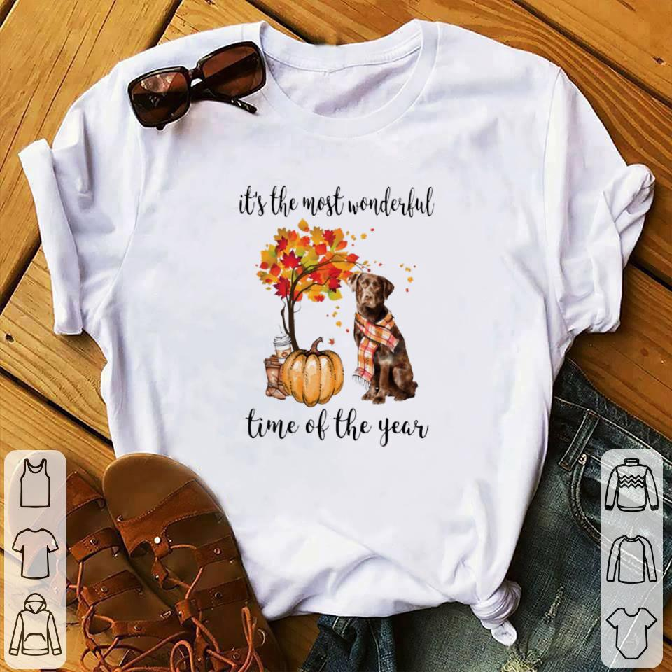 Pretty Pumpkin & Labrador it's the most wonderful time of the year shirt
