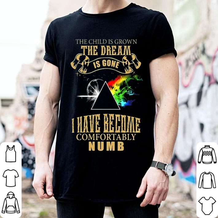 Pink Floyd the dream is gone i have become comfortably numb shirt