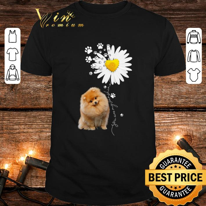 Paw Pomeranian Daisy flower you are my sunshine shirt 1