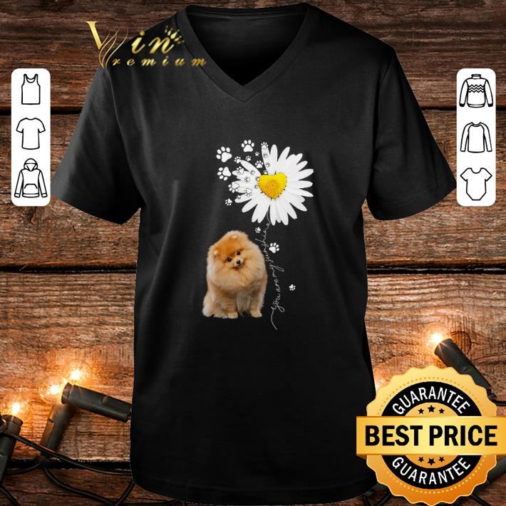 Paw Pomeranian Daisy flower you are my sunshine shirt